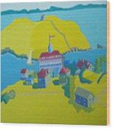 Looking Down On Monhegan And Manana Islands Wood Print