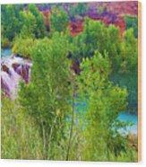 Looking Down On Navajo Falls And Havasu Creek Wood Print