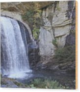 Looking Glass Falls Side View Wood Print