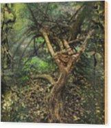 Looking Grimm Wood Print