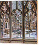 Looking Through An Arched Window At Princeton University At The Courtyard Wood Print