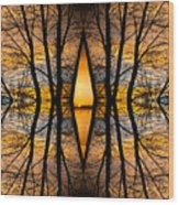 Looking Through The Trees Abstract Fine Art Wood Print