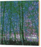 Looking Through The Trees Wood Print