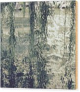 Looking Through The Willow Branches Wood Print
