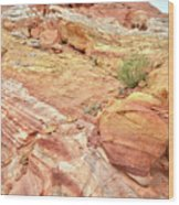 Looking Up From Wash 3 In Valley Of Fire Wood Print