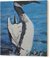 Loon Dance Wood Print