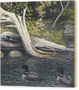 Loons On Saranac Lake Wood Print