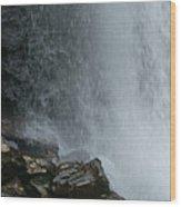 Loooking Glass Falls Wood Print