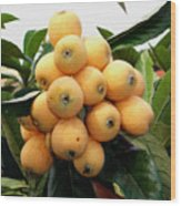 Loquat Exotic Tropical Fruit 4 Wood Print
