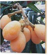 Loquat Exotic Tropical Fruit  Wood Print