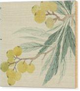 Loquat Wood Print