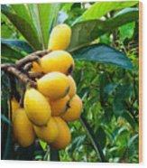 Loquats In The Tree 4 Wood Print