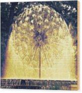 Loring Fountain Wood Print by Rashelle Brown