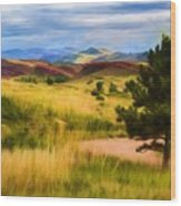 Lory State Park Impression Wood Print