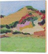 Los Alamos Valley Wood Print