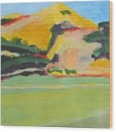 Los Alamos Valley Iv Wood Print