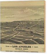 Los Angeles 1877 Wood Print