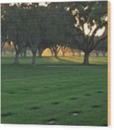 Los Angeles National Cemetary Wood Print