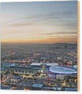 Los Angeles West View Wood Print