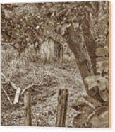 Lost Barn S Wood Print