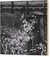Lost Bridge Wood Print