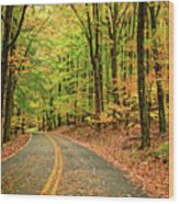 Lost In Pennsylvania Wood Print