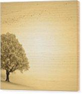 Lost In Snow - Winter In Switzerland Wood Print
