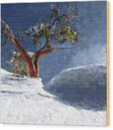 Lost In The Snow Wood Print