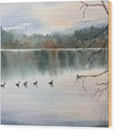 Lost Lagoon Evening Wood Print