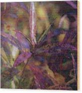 Lost Leaves Decorated In Purple 6003 Ldp_2 Wood Print