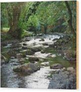 Lost River Wood Print