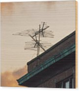 Lost Signal Wood Print