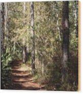Lost Trail Wood Print