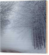 Lost Way Wood Print by Evgeni Dinev