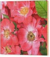 Lotta Pink Wood Print