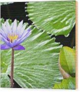 Lotus 7 Wood Print