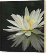 Lotus And Reflection Wood Print