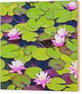 Lotus Blossom Lily Pads Wood Print