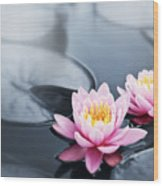 Lotus Blossoms Wood Print
