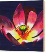 Lotus Blue Wood Print