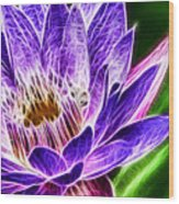 Lotus Close-up Wood Print