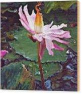 Lotus Fire Wood Print