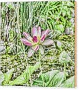 Lotus Flower Bloom In Pink 2 Wood Print