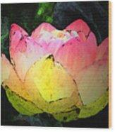 Lotus Fresco Wood Print