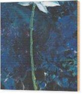 Lotus IIi Wood Print