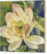 Lotus In Blooms Wood Print