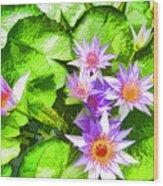 Lotus In Pond Wood Print