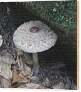 Lotus Mushroom Wood Print