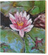 Lotus Of The Pond Wood Print