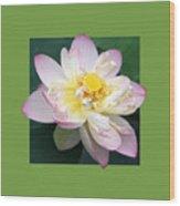Lotus On Green Wood Print